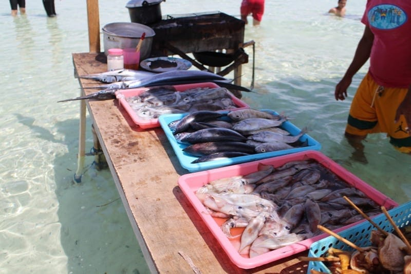 fish in the philippines