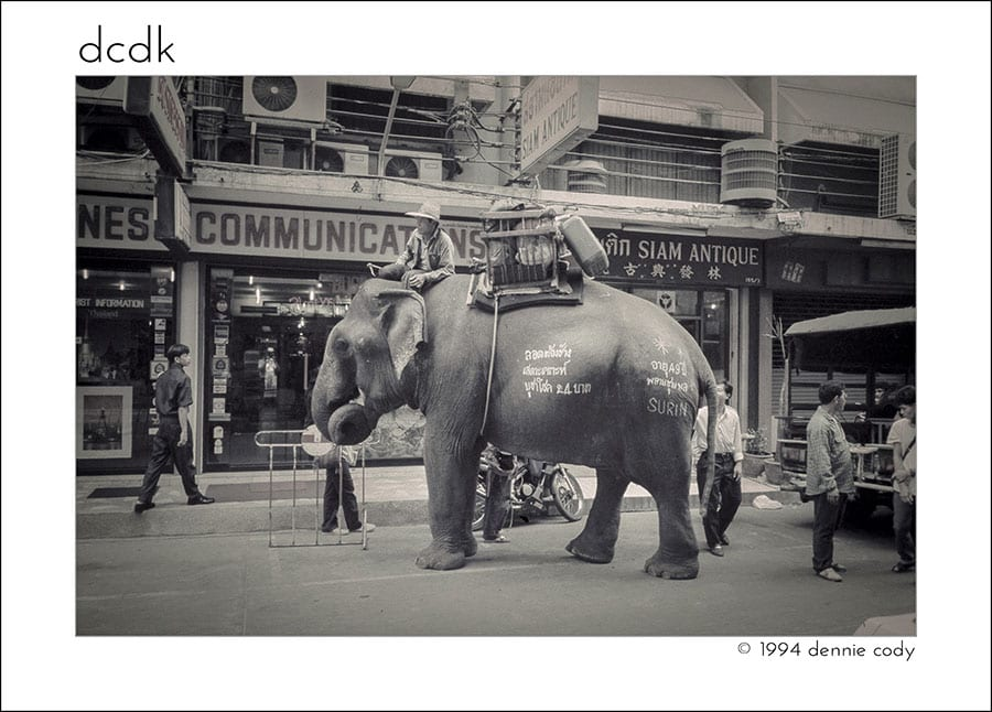 Elephant on the street in Thailand - Bangkok Street Photography