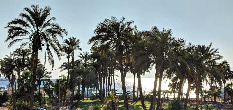 Aqaba coast red sear in Southern Jordan