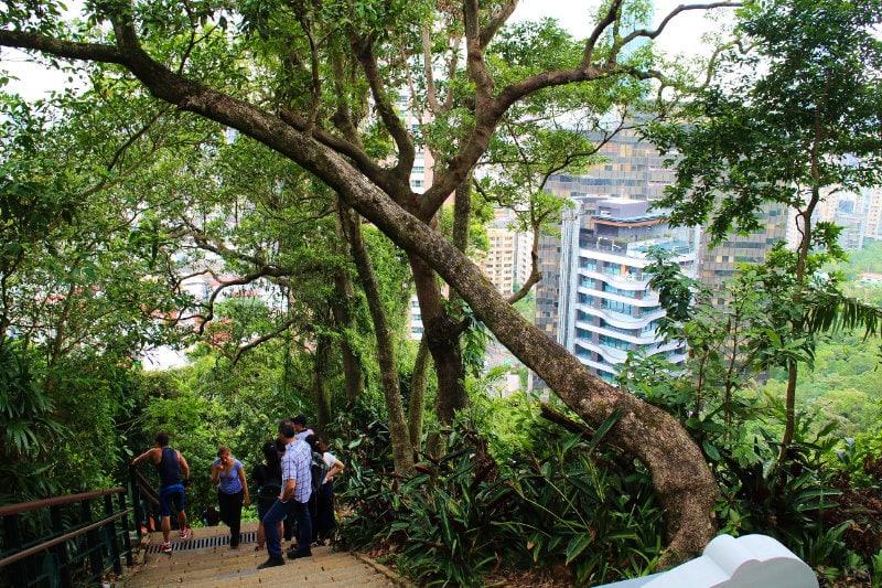 Getting fit - Hiking around Taipei