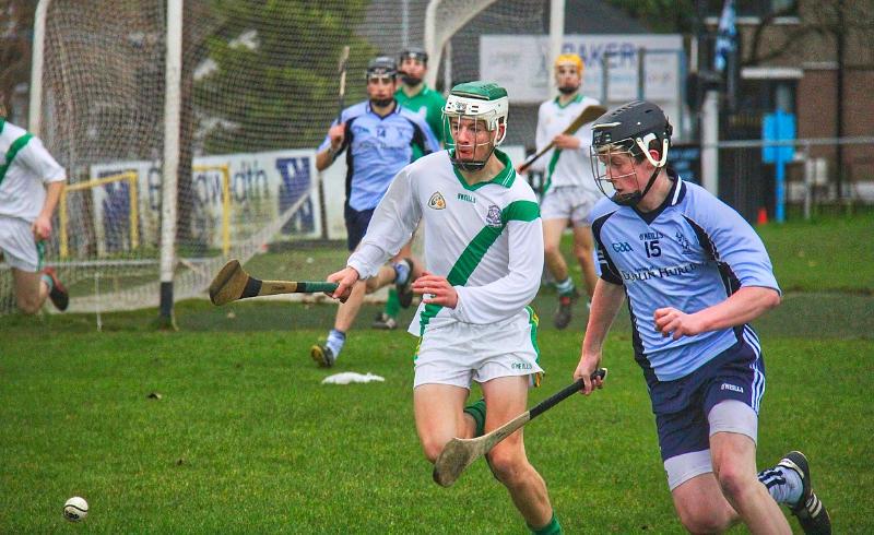 hurling game in ireland
