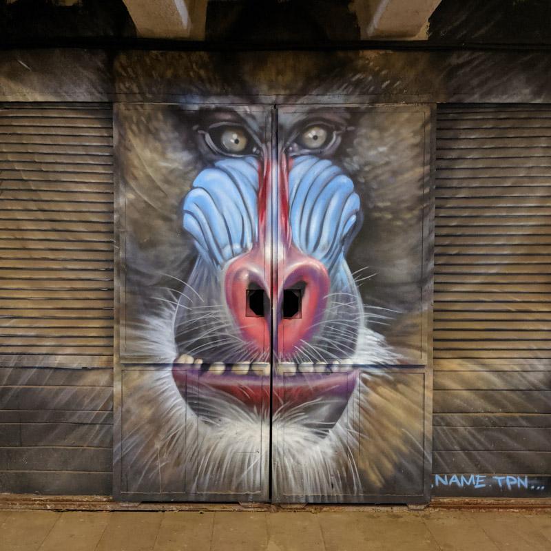 Street art mural monkey