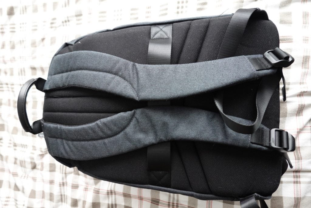 Back Of Packpack With Straps And Cushioning